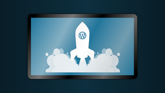 Wordpress SQL Versionierungen bereinigen